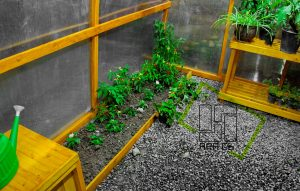 GreenHouse-wall