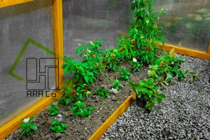 GreenHouse-wall