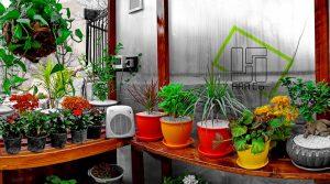 GreenHouse-wall02 (3)