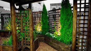 Roof Garden shariati (44)