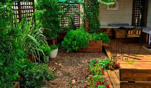 Roof Garden shariati (47)